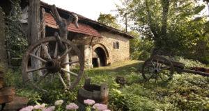 Rogljevačke pimnice