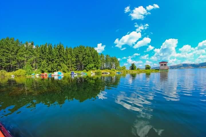 Vila Jelena - Vlasinsko jezero